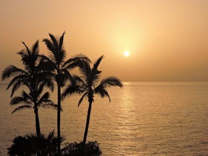 Wycieczka nad Zatokę Perską i The Palm Island
